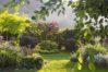 Ogród i muzyka